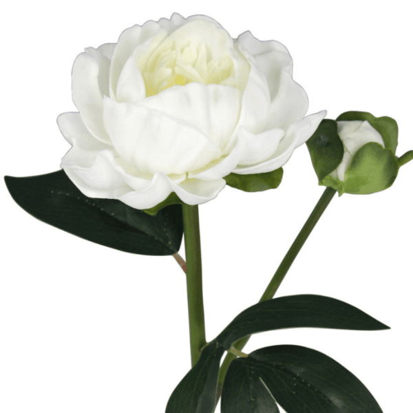 Faux White Peony Rose