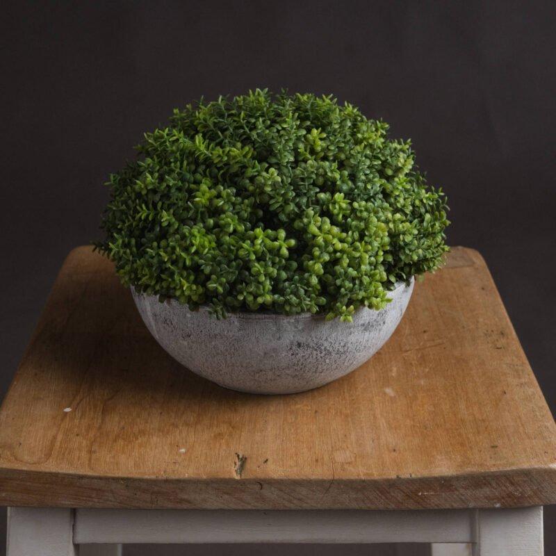 Small Hebe Globe Pot