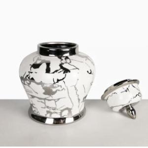 Cara White & Silver Jar 30cm Lid Off
