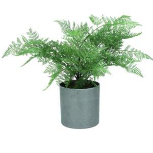 Faux Ming Fern Plant