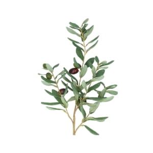 Faux Olive Branch Spray