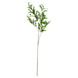 Honor Faux Olive Branch