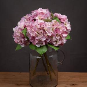 Honor Shabby Pink Hydrangea